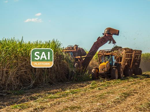 Brazil's first FSA-verified sugar producer!