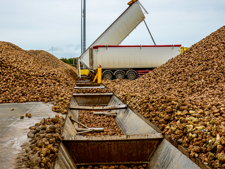 2019/20 sugarbeet campaign report : Tereos' initiatives yield their first results