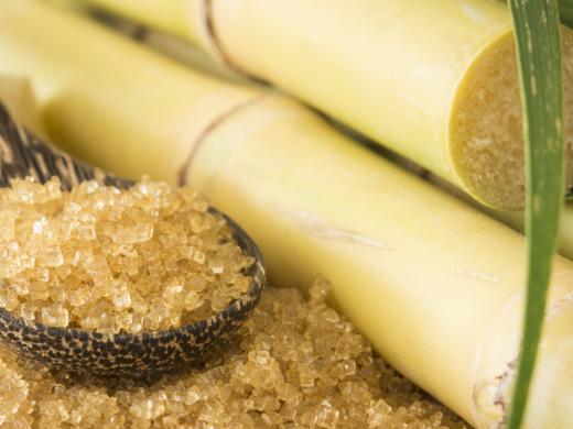 Nossos açúcares especiais no centro das reformulações de produtos