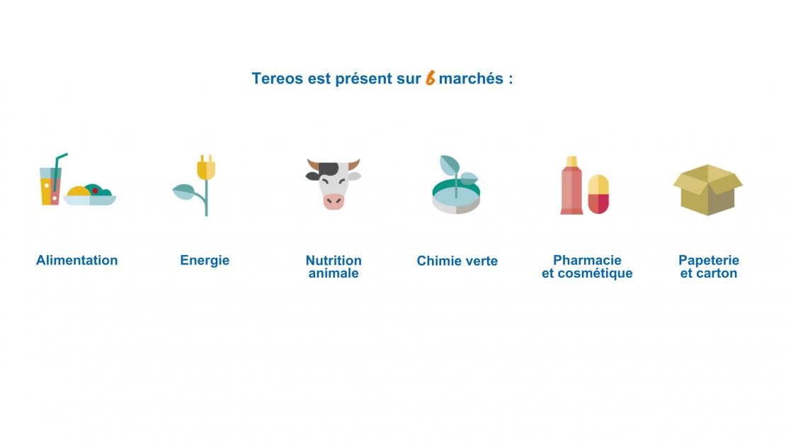 Website – marchés